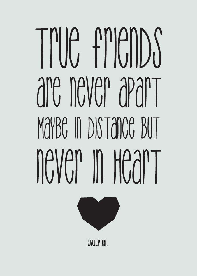 Funny Quotes About Friendship And Love Brilliant Top 20 Cute Friendship Quotes Sayings Quotesviral  Your