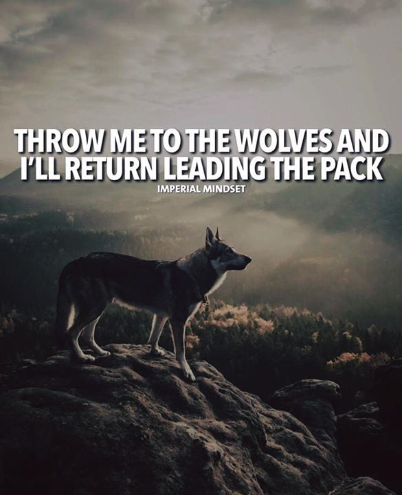 Inspirational Positive Quotes :Throw me to the wolves and